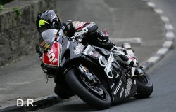 Domination d'Anstey en 1000 SPT et 600 supersport